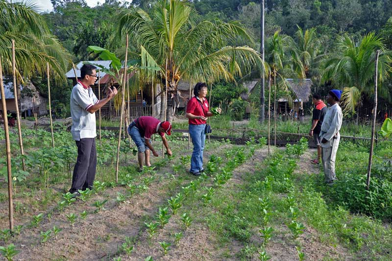Group with Kg Air Bah Lawin villagers and farmed vegetables