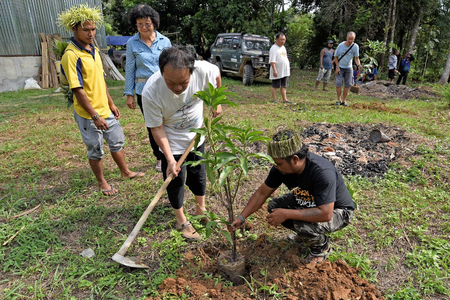 Planting trees at new hall compound